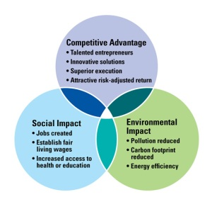 Social Impact Investing 2